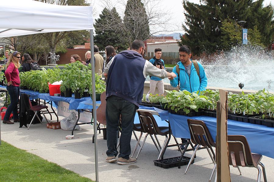 Earth Day Plant sale